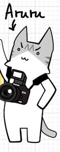 長貓記者Aruru